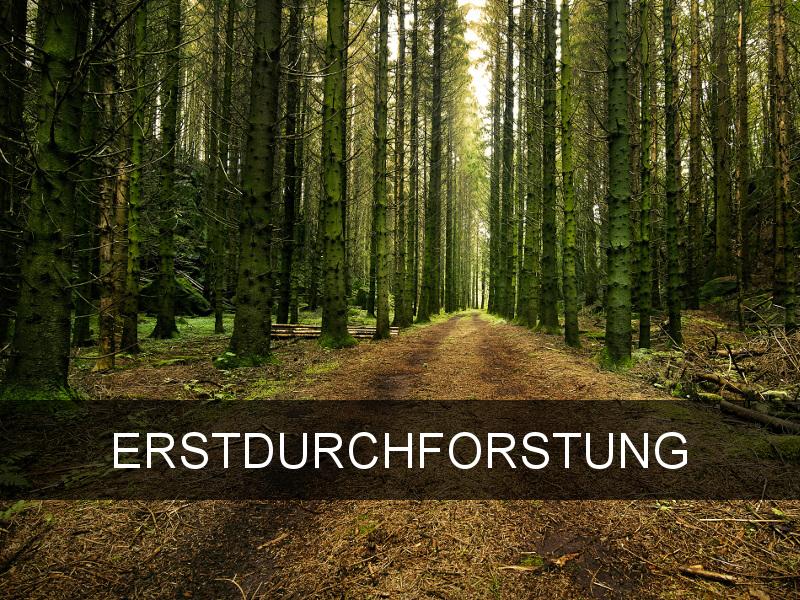 Forst Pfingstl - Hallein bei Salzburg (Tennengau), Österreich, Bayern
